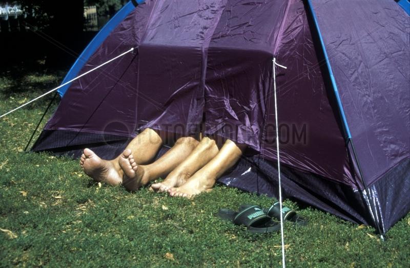 vier Beine schauen aus Zelt