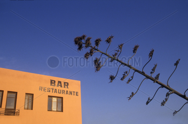 Bar,  Restaurante