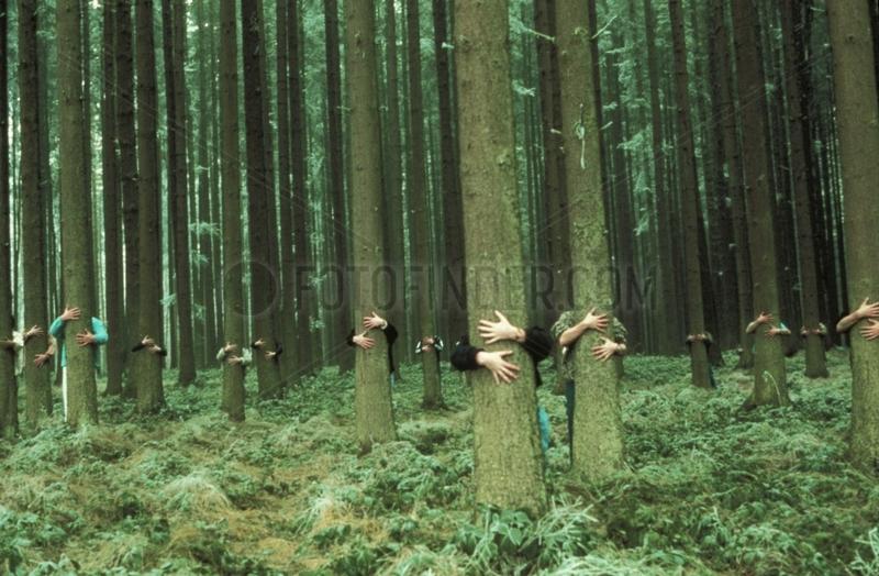 Haende umklammern Waldbaeume