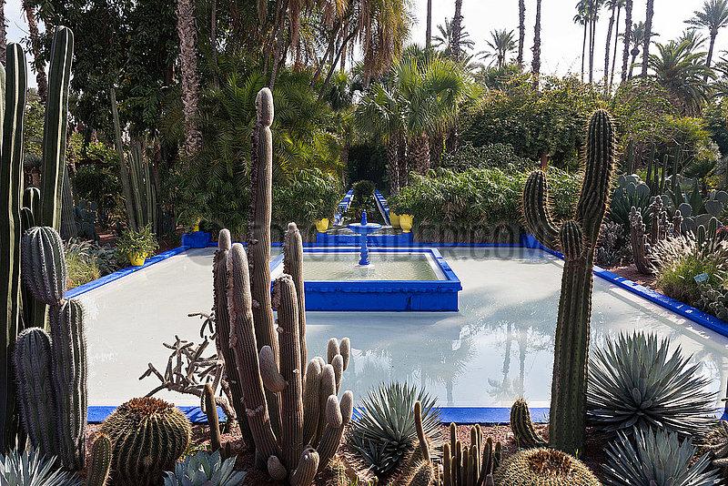 Fountain in Majorelle Gardens - Marrakesh