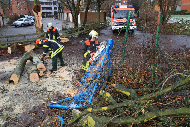 Flensburg,  Deutschland,  Feuerwehr raeumt nach dem Orkan Xaver auf
