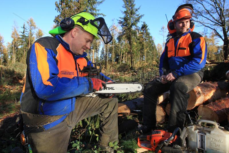 Kropp,  Deutschland,  ein Forstwirt schaerft Ketten seiner Motorsaege