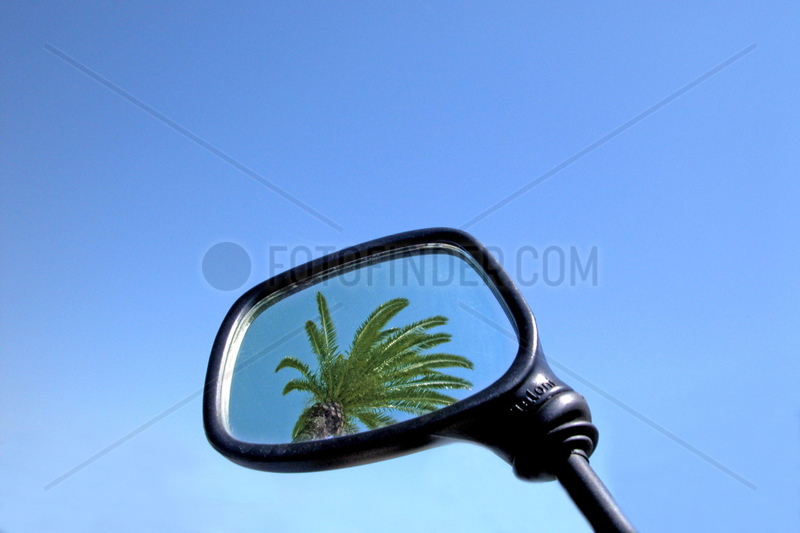 Spain Barcelona ,  palm in driving mirror
