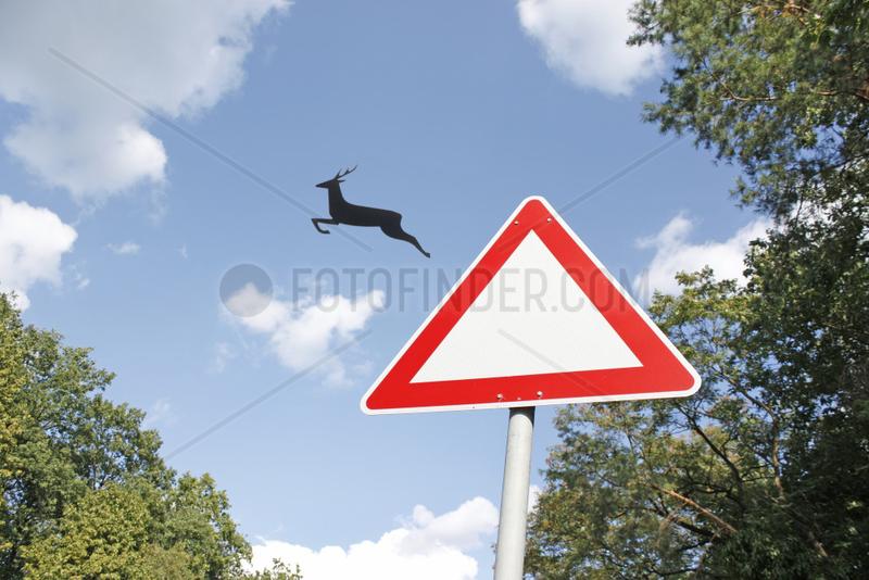 Hirsch springt aus Schild