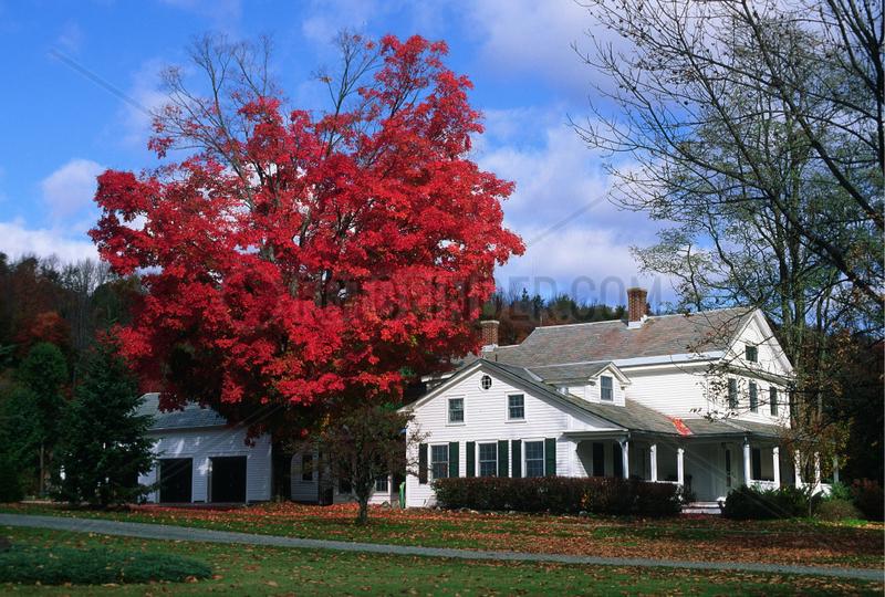 Williamstown,  USA,  Farbenpracht zum Indian Summer im Berkshire County