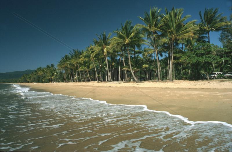 Palmenstrand in Australien