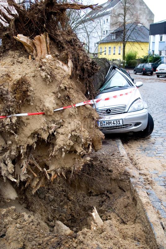 Berlin,  Sturmschaden nach Orkan Kyrill
