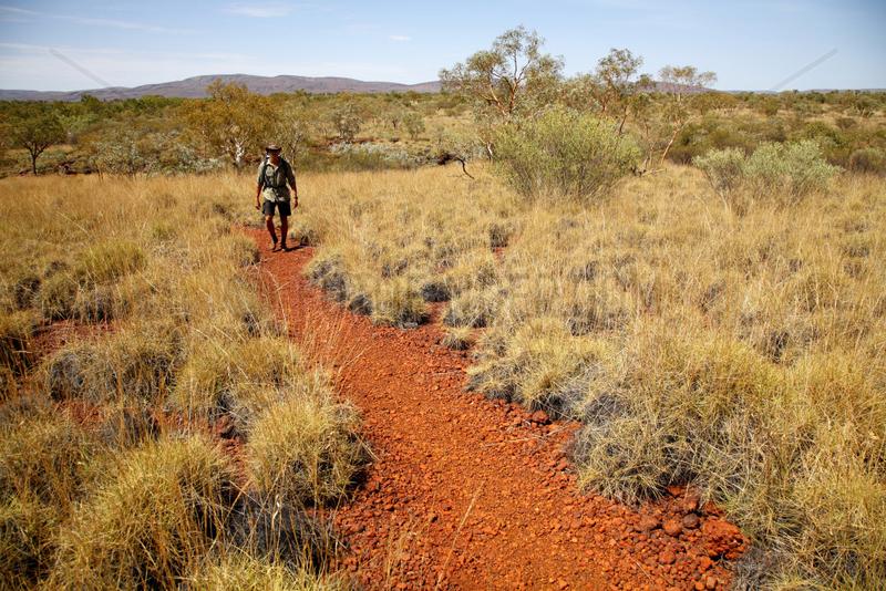 Tom Price,  Australien,  Hohebene im Karijini Nationalpark