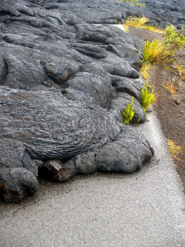 Lava auf Strasse