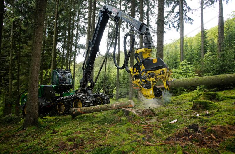 Bad-Berleburg,  Deutschland,  ein Holzernter Harvester faellt Baeume im Wald