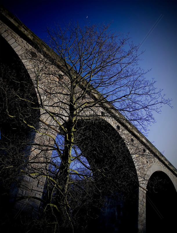 Arthington Viaduct,  near Leeds,  West Yorkshire,  2007.