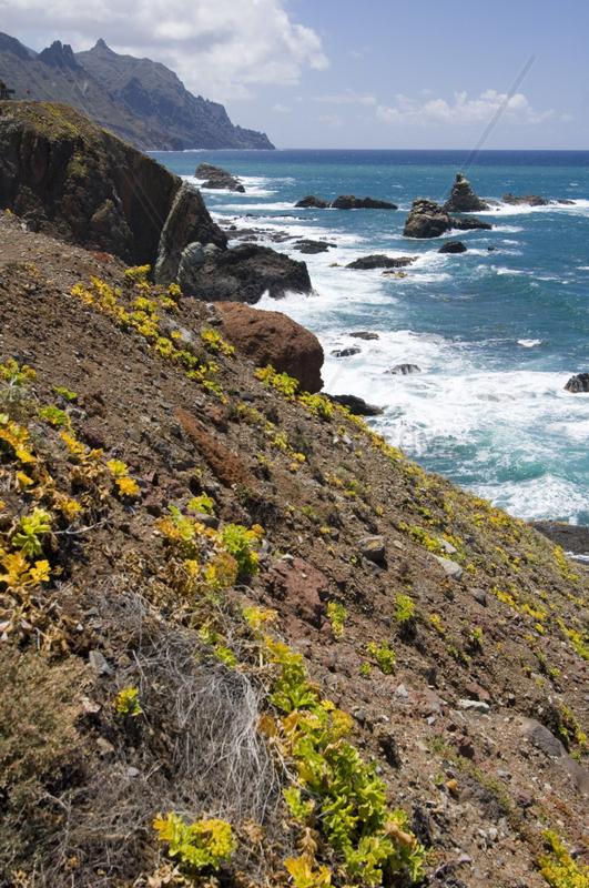 El Draguillo,  Spanien,  Atlantikkueste an den Punta de los Roquetes
