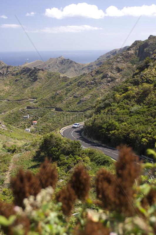 Almaciga,  Spanien,  Strasse durch das Anaga-Gebirge
