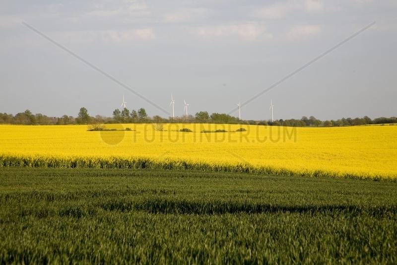 Windenergieanlagen in Mecklenburg-Vorpommern