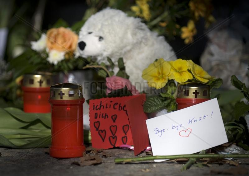 Trauer um Eisbaer Knut