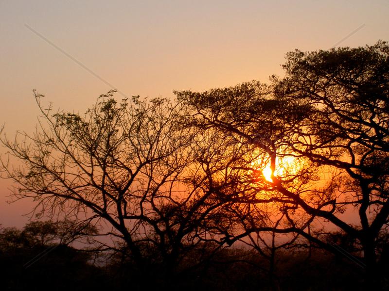 Sunset im Krueger Nationalpark