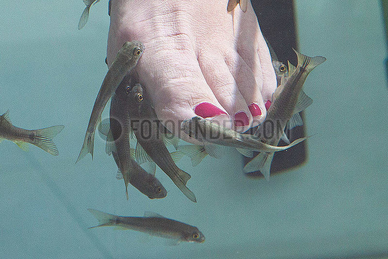 Tourist with doctor fishes - Playa Blanca,  Lanzarote