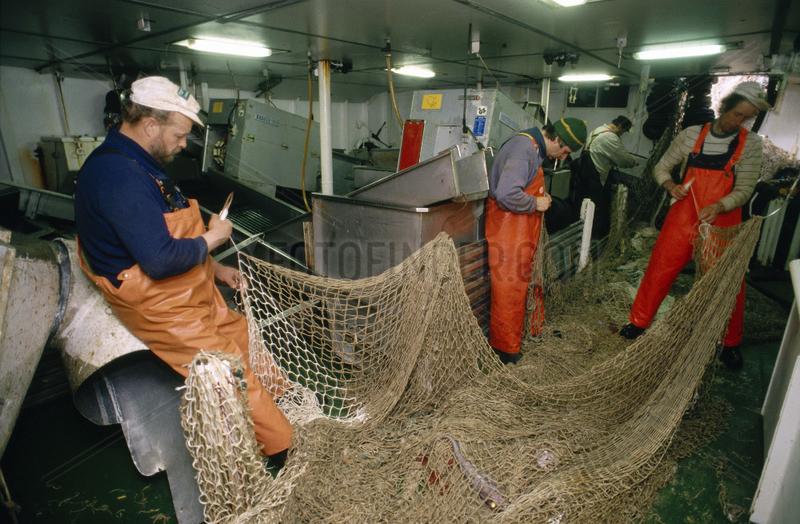 Arbeiten an Bord eines deutschen Fischtrawlers im Atlantik - Flicken der an Korallen zerrissenen Netze unter Deck