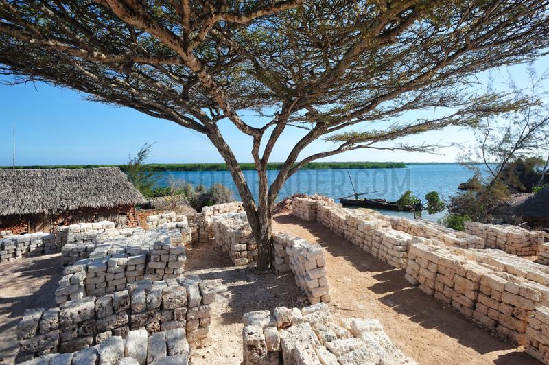Coral blocks in a career - Lamu Kenya