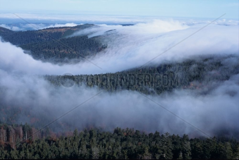 Mountains of the Vosges under the fog France