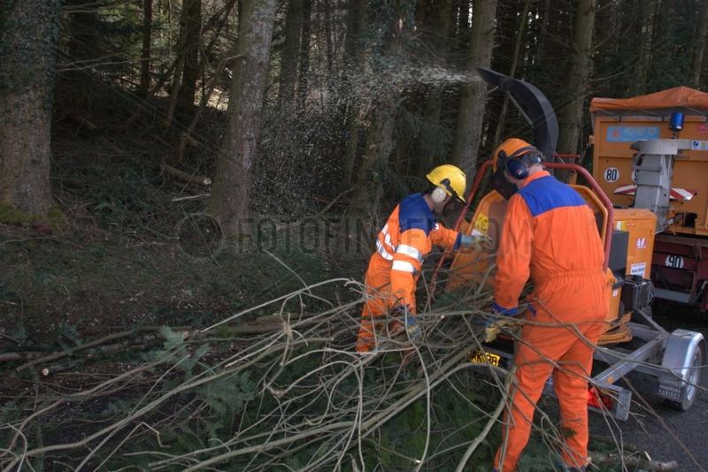Crushing waste pruning roadside France