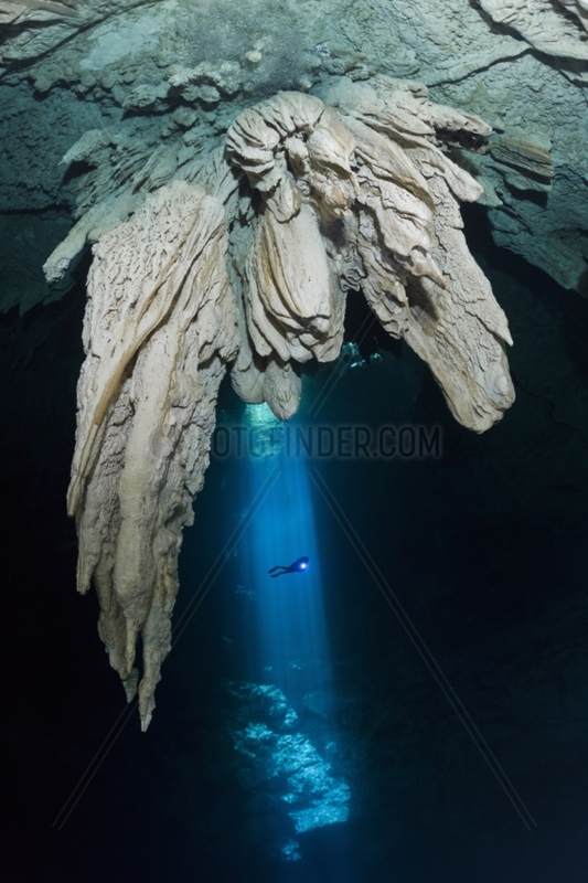 Diver into the light shining down through a cenote opening