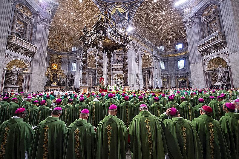 Pabst Fanziskus,  Vatikan,  Audienz