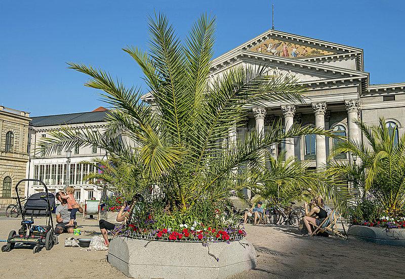 Palmengarten auf dem Max-Joseph-Platz vor der Oper,  Aktion Sommer in der Stadt,  Muenchen,  September 2020
