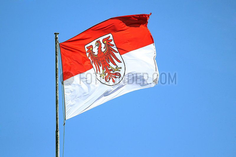 Hoppegarten,  Deutschland,  Fahne des Bundeslandes Brandenburg vor blauem Himmel