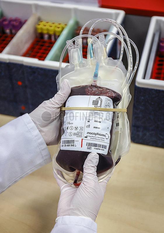 Blutspende in Zeiten der Coronakrise,  DRK Blutspendedienst West,  Essen,  Nordrhein-Westfalen,  Deutschland