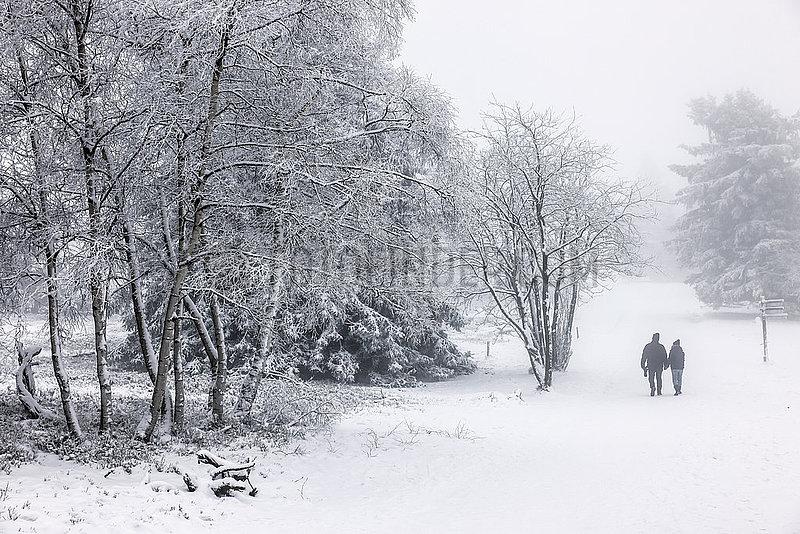 Schneelandschaft auf dem Berg Kahler Asten,  Winterberg,  Sauerland,  Nordrhein-Westfalen,  Deutschland