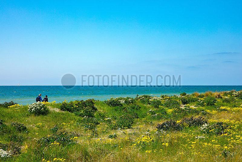 Ostseeinsel Fehmarn,  Naturstand am Flügger Leuchtturm