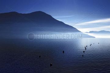 Der Lago Maggiore im Morgennebel