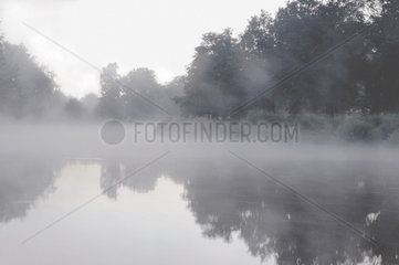 Nebel am Fluss