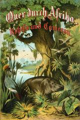 Quer durch Afrika  Buchtitel  1881