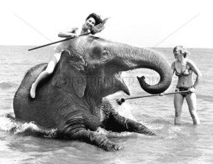 Girls bei der Elefantenwaesche