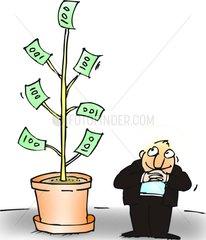 geld pflanze wachsen anlegen bank sparen invest