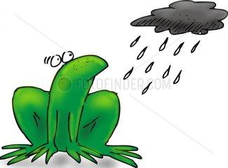 frosch regenwolke wetter logo