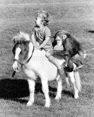Kind und Schimpanse auf Pferd