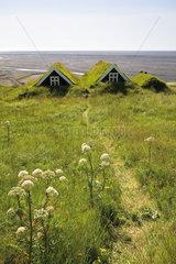 Traditional turf houses  Skaftafell National Park  Iceland