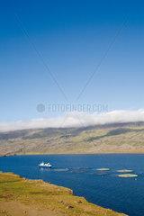 Aquafarm  Iceland