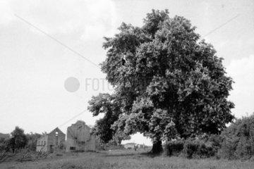 Die Gemeinde Gruorn ist ein abgegangenes Dorf. 1939 wurden die Bewohner umgesiedelt - Gruorn bei Muensingen/SchwÉbische Alb war fortan Teil des Truppenuebungsplatzes. Das Foto entstand bei einem der jÉhrlichen Pfingsttreffen um das Jahr 1978.