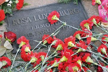 Grab von Rosa Luxemburg  Berlin