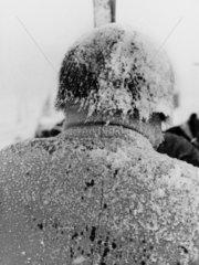 Haare voll mit Schnee und Eis