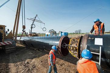 NEL-Pipeline MV