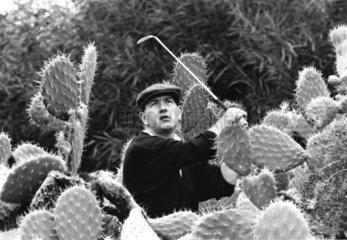 Golfer steht zwischen Kakteen