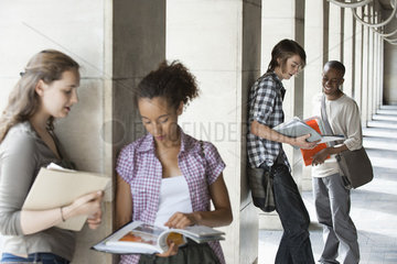 University students discussing homework  focus on men in background