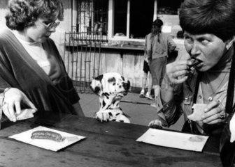 Dalmatiner bettelt zwei Frauen um Wurst an