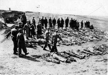 Leichen werden auf Trage abtransportiert