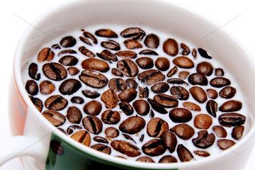 Kaffeebohnen in Milch in einer Tasse